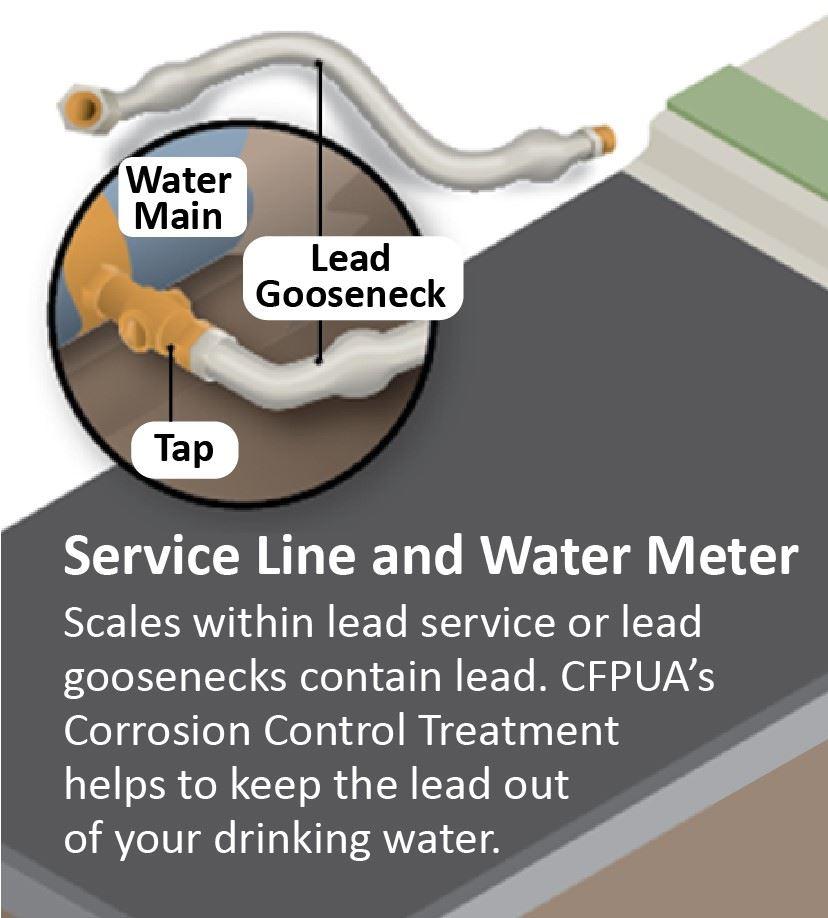 Lead Service Line Gooseneck